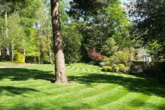 Edens Landscapes - commercial grounds maintenance services.