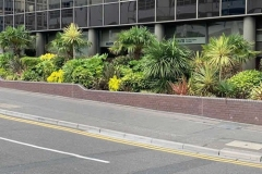 Office landscaping Bournemouth.
