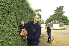 Hedge trimming services Dorset.