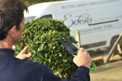 Edens Landscapes - Garden services Dorset.