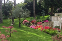 Garden landscaping Poole.