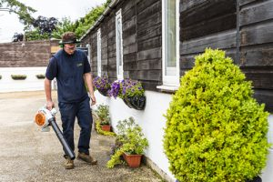 Commercial grounds maintenance services Dorset, Hampshire & Wiltshire.
