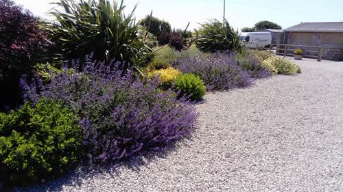Garden maintenance Dorset, Hampshire & Wiltshire.