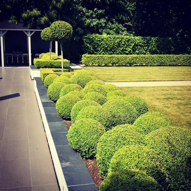 Garden design Poole - artificial lawns.